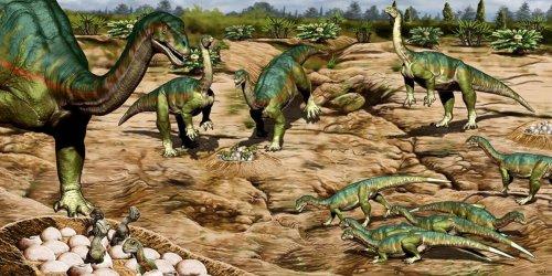 Dinosaurier: Schon vor 193 Millionen Jahren sozial