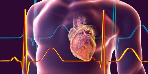 Ursachen, Symptome und schnelle Hilfe: Niedriger Blutdruck ist nicht harmlos: Sieben Symptome sollten Sie ernstnehmen