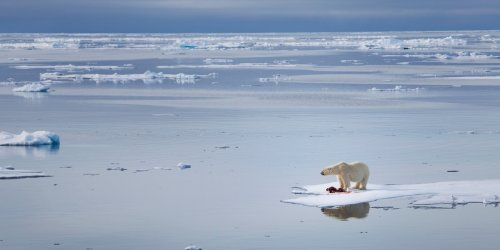 Effekt des Klimawandels: Im Frühjahr bald häufiger möglich: Schnee-Wetterchaos in Europa kommt aus der Arktis