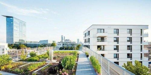 Wohngenossenschaften mit Stiftung: Bauen jenseits der Spekulanten