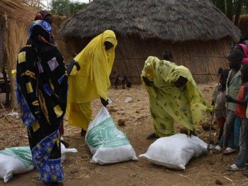 367 Prozent teurer! Lebensmittel-Preise explodieren – in erstem Land gibt es Plünderungen