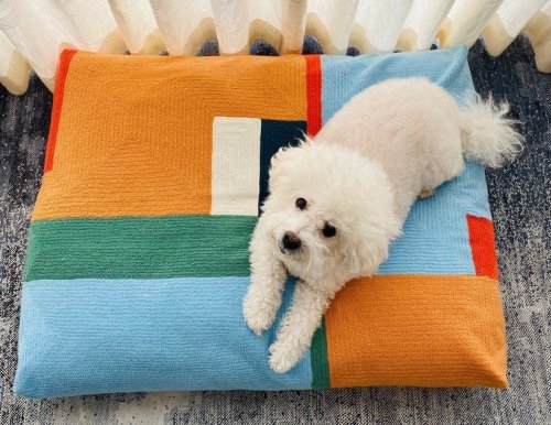 8 Best Dog Beds, According to Their Humans