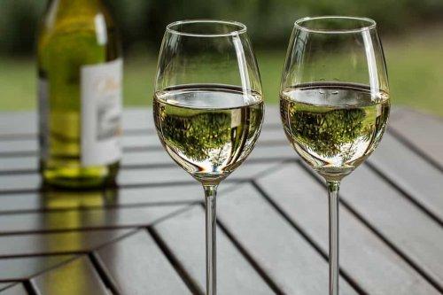 Best Unbreakable Wine Glasses