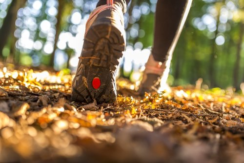 Study Shows Participation in Outdoor Sports Up Sharply in 2020, But Will the Trend Continue?