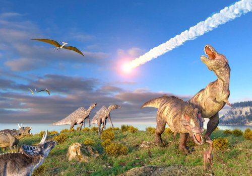 Climate Change Killed The Dinosaurs. 'Drastic Global Winter' After Asteroid Strike, Say Scientists