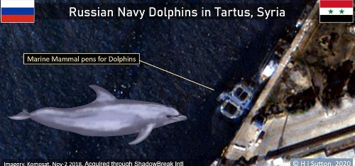 Satellite Photos Suggest Russia Sent Trained Dolphins To War In Syria