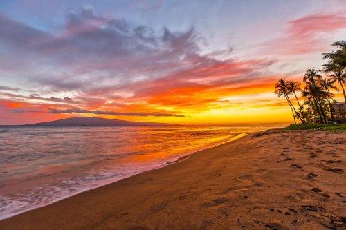 This Is Hawaii's Most Hawaiian Hotel