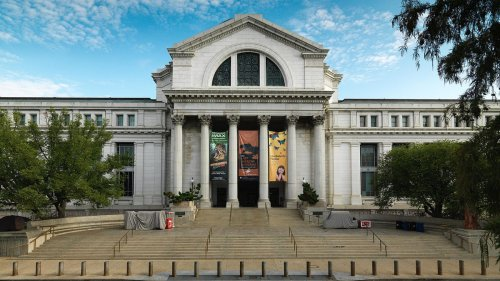 Smithsonian Museums Are Reopening This Summer. Here's What You Need To Know