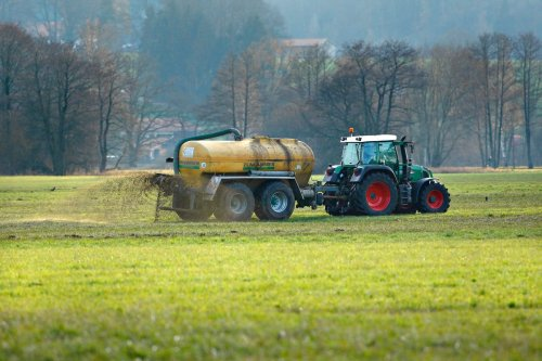 Biochar From Cow Manure Could Be Key To Sustainable Agriculture