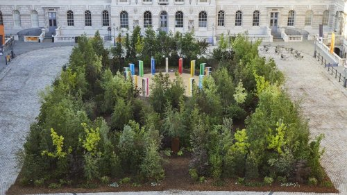 Living Forest At Somerset House Wows Visitors To London Design Biennale 2021