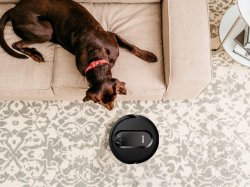 11 Robot Vacuums That Do All Of The Work For You