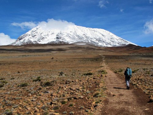 Author Post: Are You Managing A Project Or Climbing Mount Kilimanjaro?