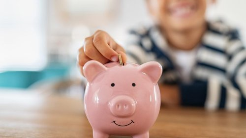 The Monthly Child Tax Credit Payment Calculator