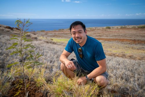 Former Reddit CEO's New Startup Terraformation Raises $30 Million To Restore Forests And Tackle Climate Change