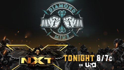 WWE NXT Results: Winners, News And Notes As The Diamond Mine Debuts