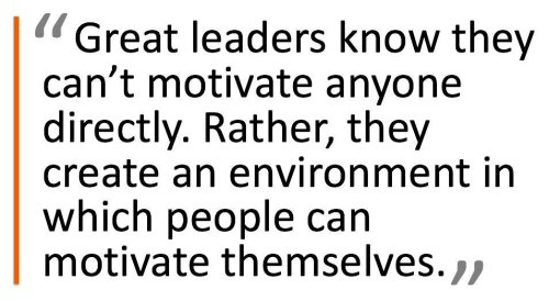 Leadership, Management & The CEO cover image