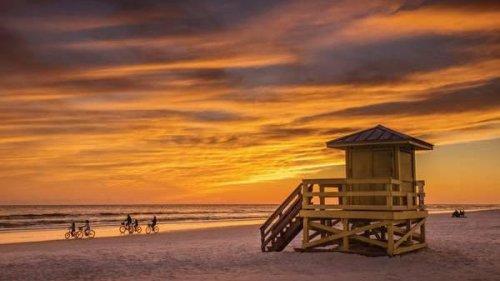 The Insider's Guide To Sarasota, Florida