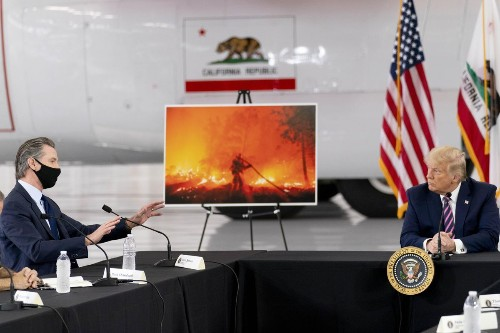 'I Don't Think Science Knows, Actually': Trump Dismisses Climate Science In California Wildfire Discussion