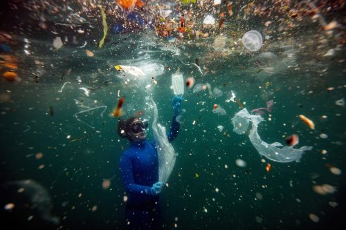 These Four Plastic Items Make Up Almost Half Of All Ocean Trash