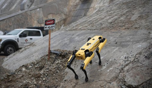 How 'Spot' The Robot Dog Is Set To Patrol The World's Dangerous Industrial Sites