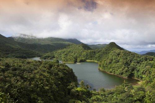 La Dominique mise sur un nouveau visa pour les télétravailleurs !   Forbes France