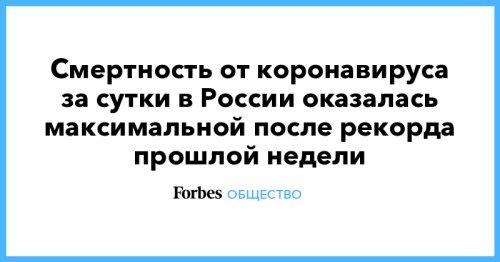 Смертность от коронавируса за сутки в России оказалась максимальной после рекорда прошлой недели