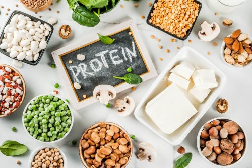 Plant Power! The Best Sources of Vegan Protein - Forkly