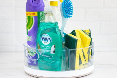 Lazy Susan DIY Hack: Cleaning Supplies - Forkly