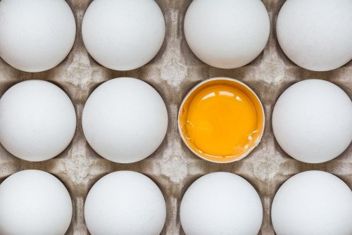 Foods You're Storing Incorrectly - Forkly