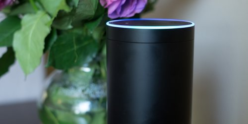 Amazon May Share Your Alexa Conversations With Developers