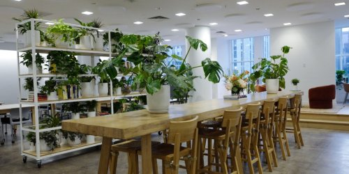 SaksWorks: Inside Saks Fifth Avenue's new social club with WeWork