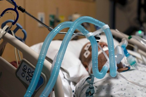 Florida confirms its first case of new coronavirus strain