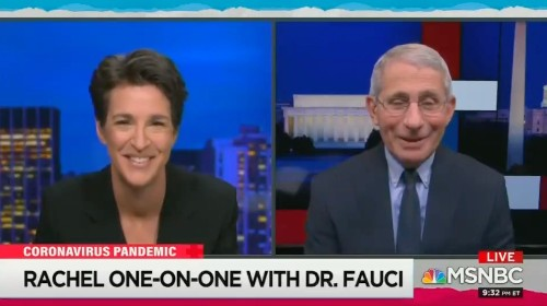 Fauci gushes over Maddow during 1st appearance on her MSNBC show, hints Trump WH 'blocked' him