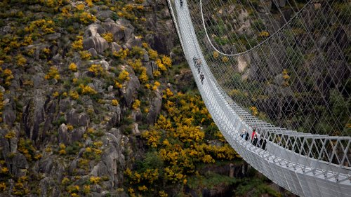 Stomach-churning pedestrian bridge opens in Portugal