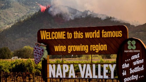 California wildfire damages at least 17 Napa Valley wineries as state sees over 4 million acres burned