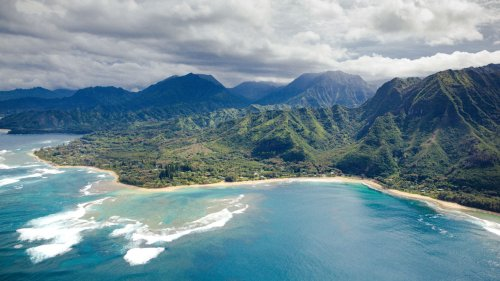 Hawaii 'close' to reaching coronavirus herd immunity, epidemiologist says