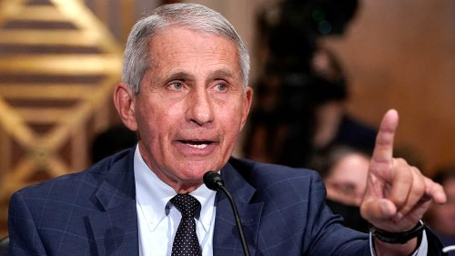 Fauci allegedly misled Trump administration on gain-of-function research in Wuhan: Book