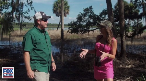 Florida's Bigfoot? Residents share their sightings of 'massive' Skunk Ape