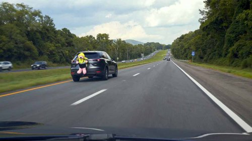 Giant pink bear strapped to car reveals a lot driver safety