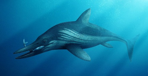 240M-year-old 'megapredator' had 12-foot reptile in its stomach
