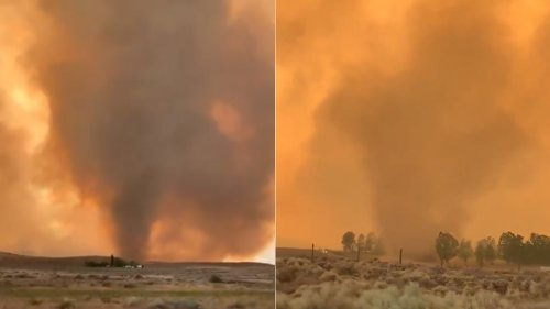 Fire tornado warning grips California as wildfire explodes with 'extremely dangerous' conditions north of Tahoe