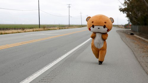 California man walking from LA to San Francisco in bear suit for charity
