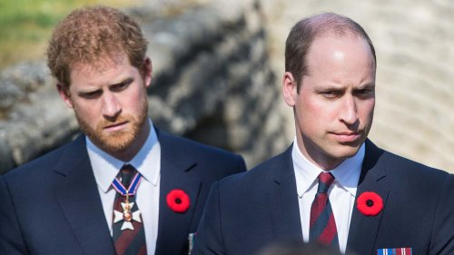 Prince William 'struggling' not to share his story after Prince Harry, Meghan Markle interview: report