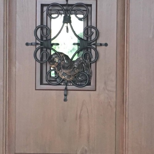 Texas man shocked as 7-foot snake wrapped around front door grille moves in for a 'closer look'