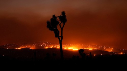 Bobcat Fire in California becomes one of largest in Los Angeles County history, whips up 'smokenado'