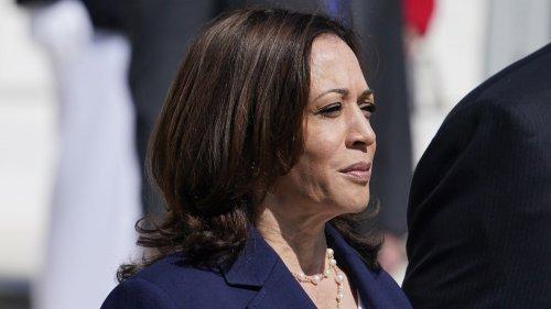 CNN panel reacts to Vice President Harris' 'cringeworthy' border answer