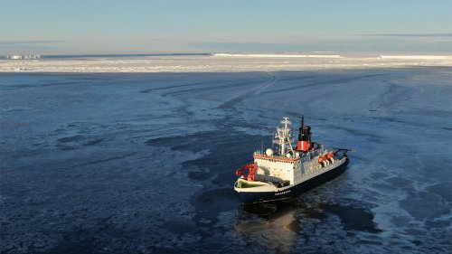 Scientists discover Antarctic marine life trapped under ice for half a century