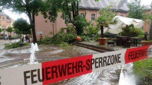 Unwetter in Deutschland auch am Montagabend: Vier Personen durch umstürzenden Baum verletzt