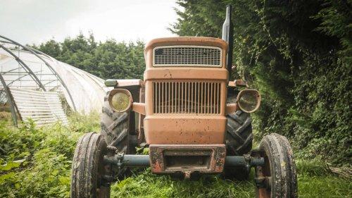 Selbstmorde von Landwirten in Frankreich: Tod auf dem Bauernhof