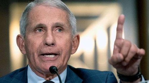 """Wutrede von Virologe Anthony Fauci: """"Wenn hier jemand lügt, Senator, dann sind Sie das"""""""